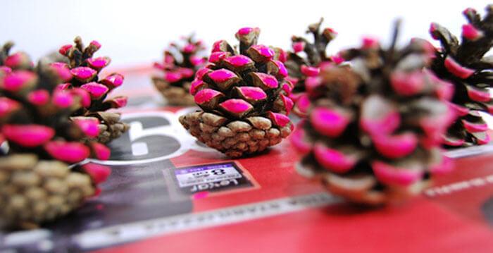 еловые шишки с розовым