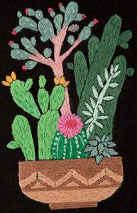 кактусы цветы 5