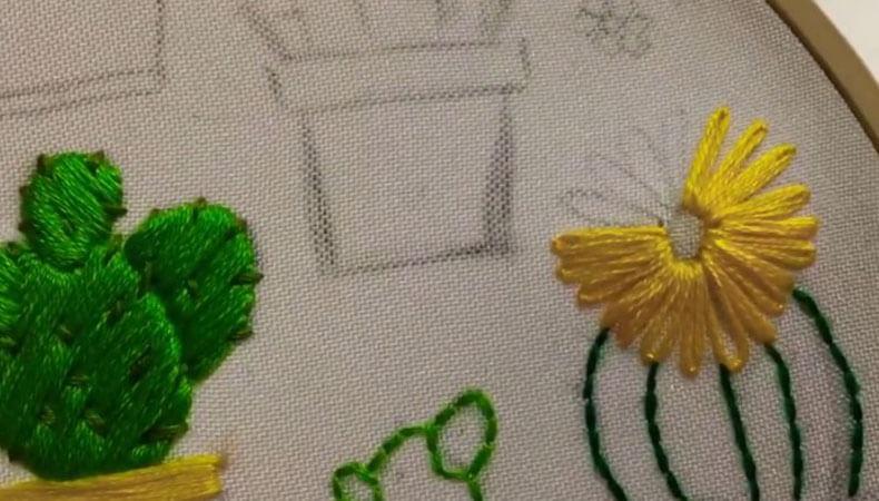 кактус круглый с цветком