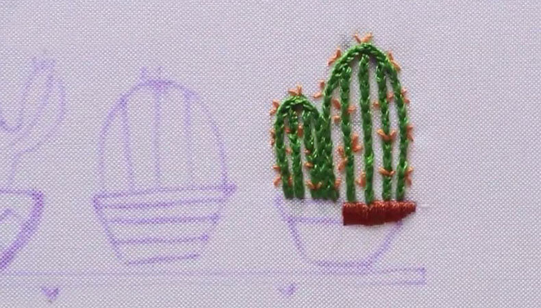 кактус по контуру